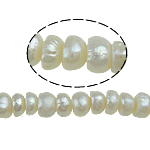 Button kultivierte Süßwasserperlen, Natürliche kultivierte Süßwasserperlen, weiß, 3-4mm, Bohrung:ca. 0.8mm, verkauft per 15 ZollInch Strang