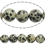 Dalmatinische Perlen, Dalmatiner, rund, natürlich, 12mm, Bohrung:ca. 1.2mm, Länge:ca. 15 ZollInch, 10SträngeStrang/Menge, ca. 32PCs/Strang, verkauft von Menge