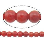 Natürliche Korallen Perlen, rund, rot, 3mm, Bohrung:ca. 0.5mm, Länge:ca. 16 ZollInch, 10SträngeStrang/Menge, ca. 156PCs/Strang, verkauft von Menge