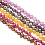 Barock kultivierten Süßwassersee Perlen, Natürliche kultivierte Süßwasserperlen, gemischte Farben, Grade A, 5-6mm, Bohrung:ca. 0.8mm, Länge:14.5 ZollInch, 10SträngeStrang/Tasche, verkauft von Tasche