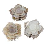 Muschel Schnappschließe, Süßwassermuschel, mit Messing, Blume, natürlich, 3-Strang, gemischte Farben, 44x44x13mm, Bohrung:ca. 2.5mm, verkauft von PC