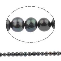 Barock kultivierten Süßwassersee Perlen, Natürliche kultivierte Süßwasserperlen, rund, schwarz, 10-11mm, Bohrung:ca. 0.8mm, verkauft per 14.5 ZollInch Strang