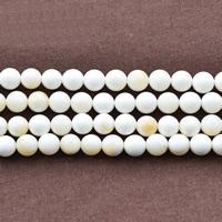 Riesenmuscheln Perlen, Riesenmuschel, rund, natürlich, verschiedene Größen vorhanden, weiß, Bohrung:ca. 1mm, verkauft per ca. 15.5 ZollInch Strang