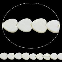 Natürliche weiße Muschelperlen, Herz, 12x12x3mm, Bohrung:ca. 0.8mm, Länge:ca. 15.5 ZollInch, 10SträngeStrang/Tasche, ca. 16PCs/Strang, verkauft von Tasche