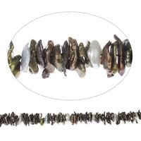 Biwa kultivierte Süßwasserperlen, Natürliche kultivierte Süßwasserperlen, farbenfroh, 11x1mm-19x6mm, Bohrung:ca. 0.8mm, verkauft per ca. 15.5 ZollInch Strang