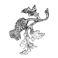 Zinklegierung Cabochon, ObstFrucht, antik silberfarben plattiert, flache Rückseite, frei von Nickel, Blei & Kadmium, 29x45x4mm, 200PCs/Tasche, verkauft von Tasche