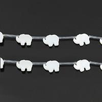 Natürliche weiße Muschelperlen, Elephant, 11x8x2.50mm, Bohrung:ca. 0.5mm, ca. 20PCs/Strang, verkauft per ca. 11 ZollInch Strang