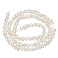 Natürliche Süßwasser, lose Perlen, Natürliche kultivierte Süßwasserperlen, Keishi, weiß, 4-5mm, Bohrung:ca. 0.8mm, verkauft per ca. 13.5 ZollInch Strang