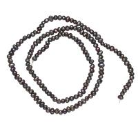 Natürliche Süßwasser, lose Perlen, Natürliche kultivierte Süßwasserperlen, schwarz, 2-3mm, Bohrung:ca. 0.8mm, verkauft per ca. 15 ZollInch Strang