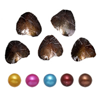 Freshwater Cultured Love Wish Pearl Oyster Potato mixed colors 7-8mm Sold By Lot