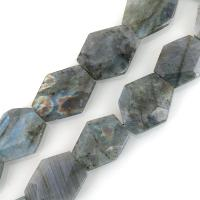 Labradorit Perlen, facettierte, 25-38x21-31x8-9mm, Bohrung:ca. 2mm, ca. 12PCs/Strang, verkauft per ca. 15.5 ZollInch Strang