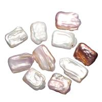 Kultivierte kernhaltige Süßwasserperlen, kultivierte Süßwasser kernhaltige Perlen, natürlich, kein Loch, keine, 23x16x5mm, verkauft von PC