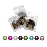 Oyster & amp; Wunsch Perlen-Kit, Akoya Zuchtperlen, 6-7mm, verkauft von PC