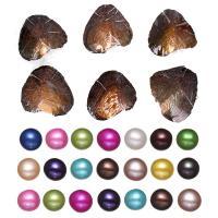 Süßwasser kultivierte Liebe wünschen Perlenaustern, Natürliche kultivierte Süßwasserperlen, Kartoffel, gemischte Farben, 6.5-7mm, 20PCs/Tasche, verkauft von Tasche