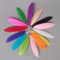 Feder Anhänger, mit Eisen Stiftöse, Federn, keine, 70-90mm, Bohrung:ca. 1mm, 100PCs/Tasche, verkauft von Tasche
