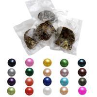 Akoya kultivierte Seeperle Oyster Perlen, Akoya Zuchtperlen, Kartoffel, gemischte Farben, 7-8mm, 50PCs/Tasche, verkauft von Tasche