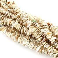 Trompete Muschel Perle, Klumpen, natürlich, weiß, 12-18mm, Bohrung:ca. 1mm, verkauft per ca. 17 ZollInch Strang
