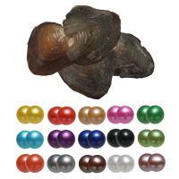 Süßwasser kultivierte Liebe wünschen Perlenaustern, Natürliche kultivierte Süßwasserperlen, Kartoffel, gemischte Farben, 7-8mm, 15PCs/Tasche, verkauft von Tasche
