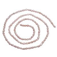 Barock kultivierten Süßwassersee Perlen, Natürliche kultivierte Süßwasserperlen, Klumpen, natürlich, Rosa, 2-3mm, Bohrung:ca. 0.8mm, verkauft per ca. 15 ZollInch Strang