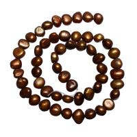Kartoffel Süßwasser Zuchtperlen, Natürliche kultivierte Süßwasserperlen, Kaffeefarbe, 7-8mm, Bohrung:ca. 0.8mm, verkauft per ca. 14.5 ZollInch Strang
