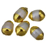 Natürliche kultivierte Süßwasserperlen Perle, Klumpen, goldfarben plattiert, 9-10x14-16x9-10mm, Bohrung:ca. 1mm, 10PCs/Menge, verkauft von Menge