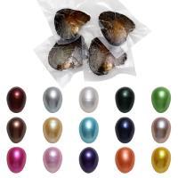 Süßwasser kultivierte Liebe wünschen Perlenaustern, Natürliche kultivierte Süßwasserperlen, Reis, gemischte Farben, 7-8mm, 50PCs/Menge, verkauft von Menge
