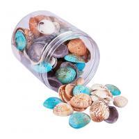 Muschel Zubehör, natürliche & Multifunktions & DIY, gemischte Farben, 20~29X32~37X8~10mm, Bohrung:ca. 1mm, ca. 100PCs/Box, verkauft von Box
