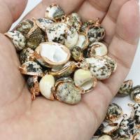 Natürliche Seemuschel Anhänger, Trompete Muschel, mit Messing, Strandschnecke, goldfarben plattiert, verschiedene Stile für Wahl, Bohrung:ca. 2mm, 10PCs/Tasche, verkauft von Tasche