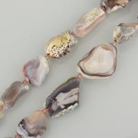 persische Jade Perle, 22-40x16-32x8-11mm, Bohrung:ca. 1.5mm, ca. 13PCs/Strang, verkauft per ca. 16 ZollInch Strang